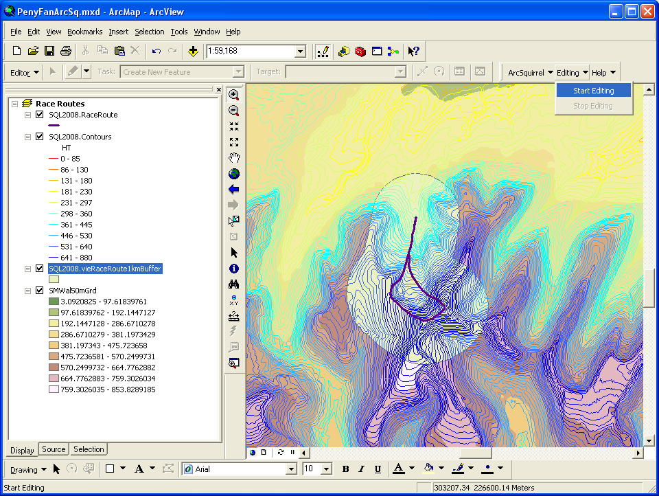 Preparing to edit ArcSquirrel data in ArcMap